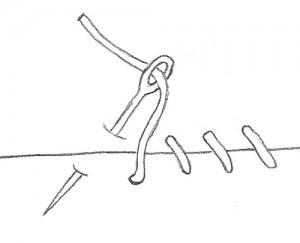 Whip Stitch Instructions Step 2 Image